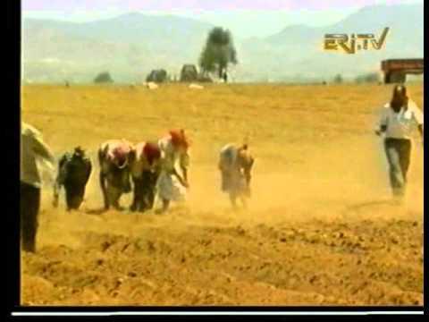 Eri Tv News, Arabic music June 2000