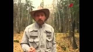 Ориентирование в лесу если вы заблудились.Часть 1(Ориентирование в лесу если вы заблудились.Часть 1 Туристические пешие походы в горы,лес. Настоящие туристич..., 2014-10-30T08:56:31.000Z)