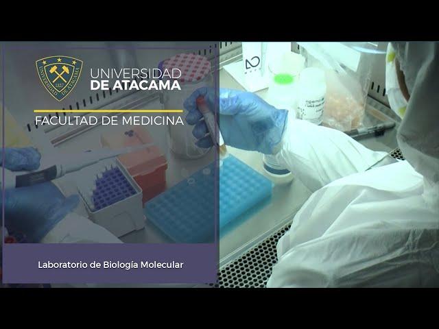Laboratorio de Biología Molecular Facultad de Medicina Universidad de Atacama