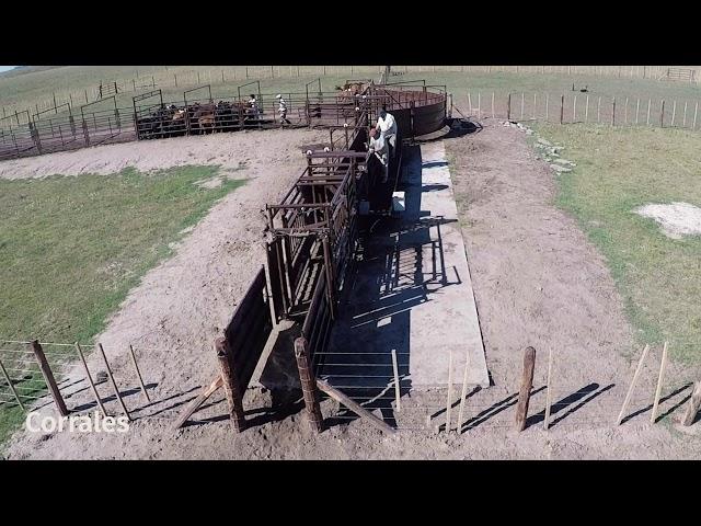 🐮 Instalación Ganadera, segura y ágil para el manejo de ganado.🐄