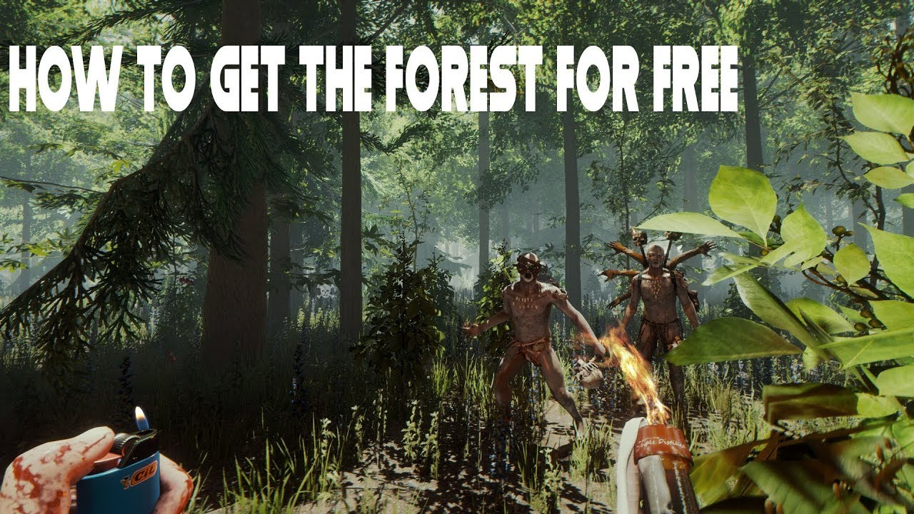 how to get the forest free