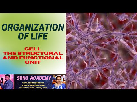 CELL-THE STRUCTURAL AND FUNCTIONAL UNIT