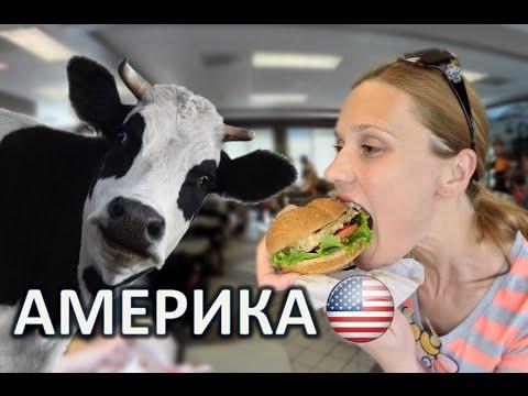 Доставка еды на дом в Минске. Еда на заказ