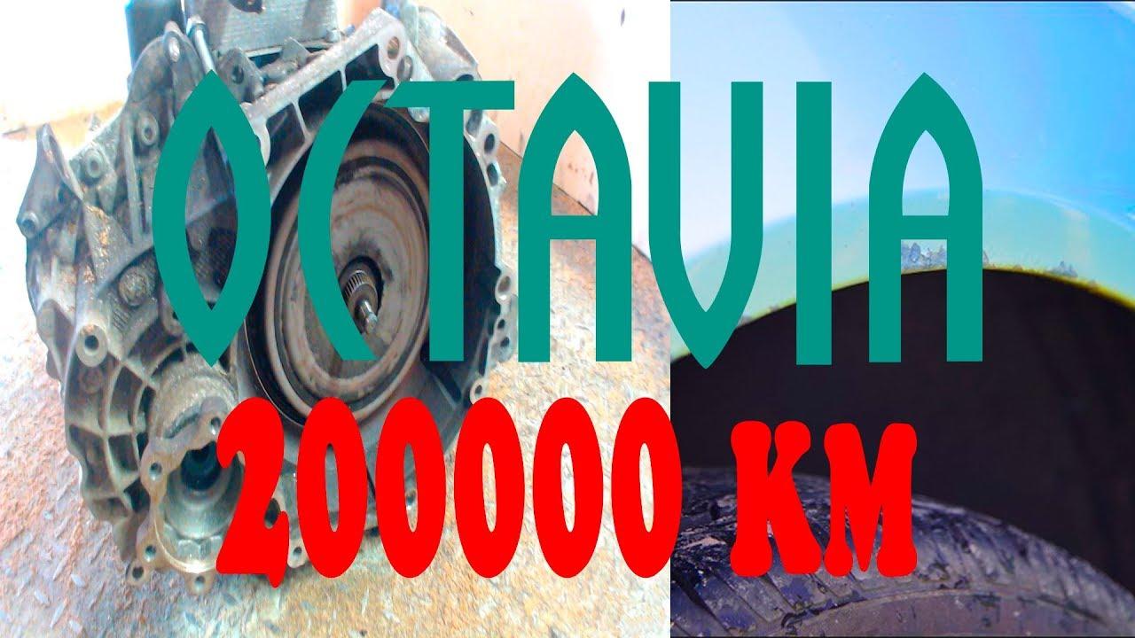Шкода Октавия А5 1.6 200.000 км пробега   Отзыв владельца ...