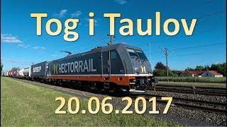 Tog i Taulov 20.06.2017 DSB / DB Schenker / Hectorrail