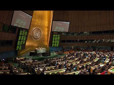 Голосування ООН про