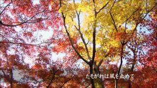 歌・ギター/syun コーラス・mix/有二(pyuka708)さん https://www.yout...