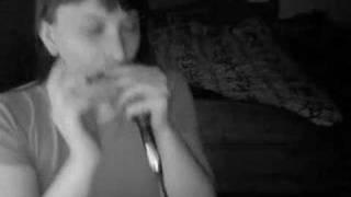 Yesterday - The Beatles with my diatonic harmonica in C
