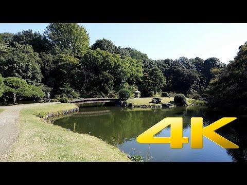 Shinjuku Gyoen - Tokyo - 新宿御苑 - 4K Ultra HD