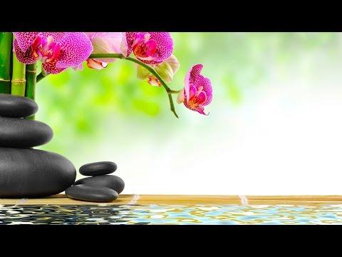 Música Relajante | Música de Relajación | Música para Relajarse | Música Instrumental con Agua