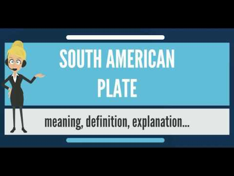What is SOUTH AMERICAN PLATE? What does SOUTH AMERICAN PLATE mean? SOUTH AMERICAN PLATE meaning