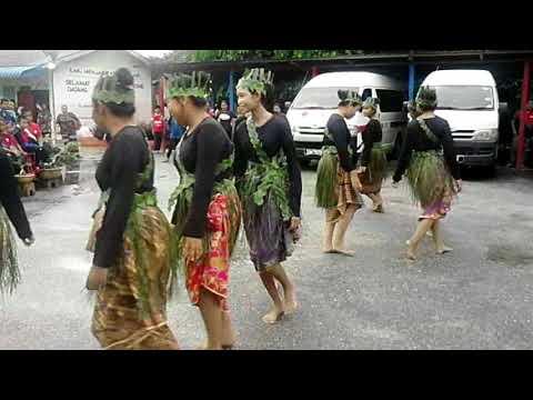 Sewang Orang Asli Labong Endau Johorr .