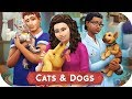 NEW VET CAREER THE SIMS 4 CATS AND DOGS TRAILER REACTION