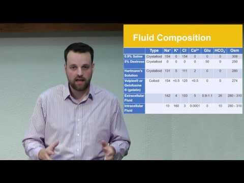 Fluid Balance (Approaching The Patient With...)