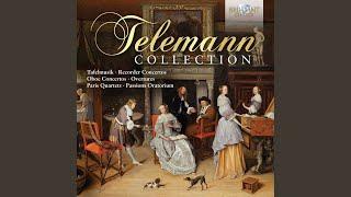 Concerto for Recorder and Flute in E Minor, TWV 52:e1: IV. Presto