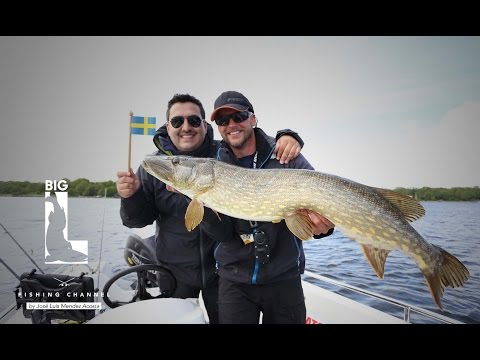 Hecht Paradies - Big L in Big Sweden - Part 2- Angeln in den Schären
