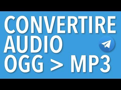 Come scaricare messaggi audio da Telegram e convertire file audio da ogg a mp3
