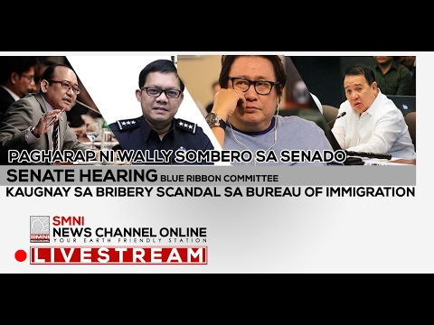 LIVE! SENATE HEARING - BLUE RIBBON COMMITTEE, BRIBERY SCANDAL SA BUREAU OF IMMIGRATION 02/16/17