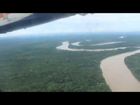 View hutan Kalimantan Timur dari udara