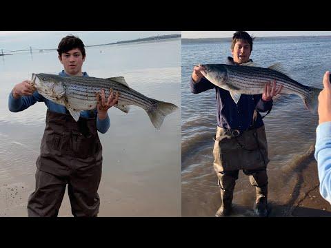 MASSIVE Delaware River STRIPER FISHING!! (New Jersey)