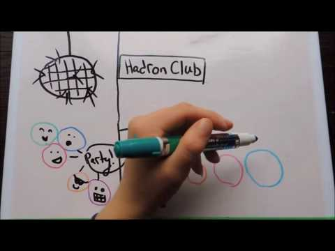 High Energy Particle Physics: Quarks, Hadrons & Leptons