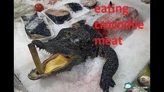 I'M EATİNG CROCODİLE MEAT (TİMSAH ETİ YEDİM)