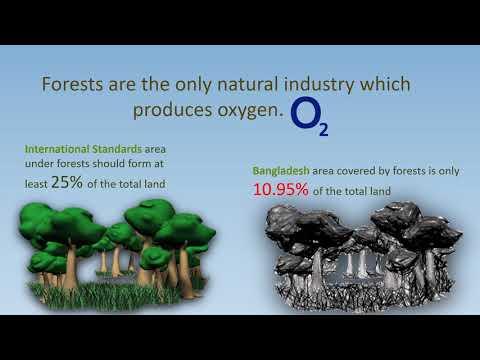 Tree Plantation presentation of southeast university - YouTube