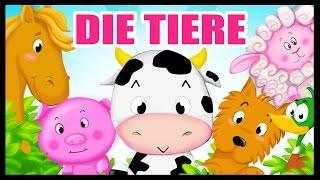 Die Tiere auf deutsch lernen - German Vocabulary - Titounis