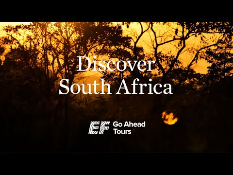 South Africa Tours: From Cape Town to the National Parks