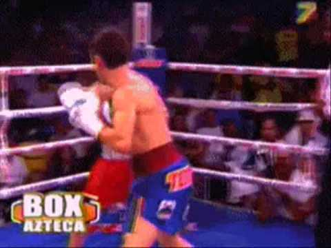 Download Boxe Excelente Nocaute