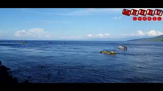 Gambar cover BORERO - Lagu daerah Maluku Utara KARAOKE & Artinya