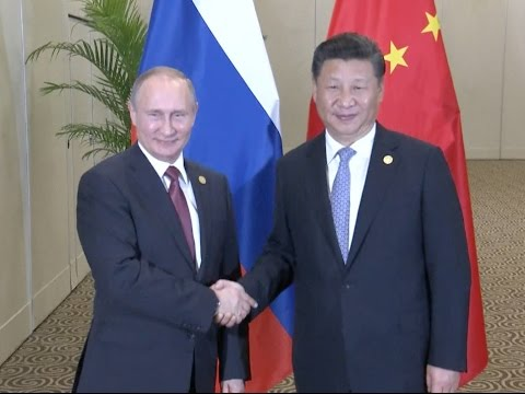 Xi, Putin Meet on Asia-Pacific Free Trade, China-Russia Ties