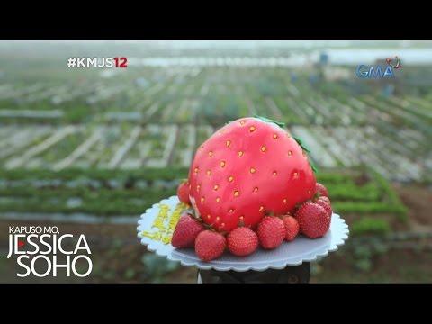 Kapuso Mo, Jessica Soho: Strawberry fields forever