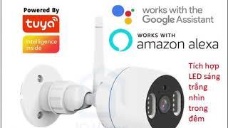Camera thông minh Tuya Smart life tương thích google/Alexa, Dual light (LED trắng + LED hồng ngoại)