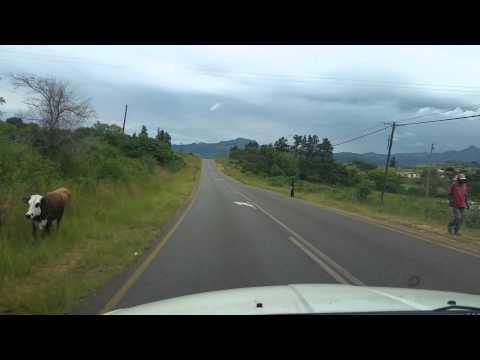 trip Malelane(SAF) - Mbabane(Swaziland) with border