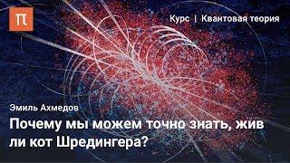 Парадокc кота Шредингера - Эмиль Ахмедов
