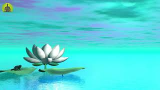 """Healing Music for The Body & Soul"" Meditation Music, Relaxing Music, Sleep Positive Energy"