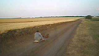 скачки такс в упряжке 2 http://forum.gorod.dp.ua/showthread.php?t=134280 thumbnail
