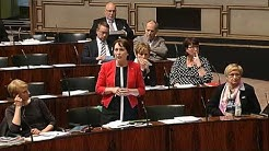 Eduskunnan keskustelu pakkoruotsista (15.5.2014)