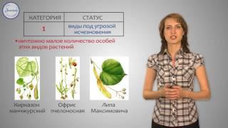 Биология 6 класс. Охраняемые растения России и красная книга