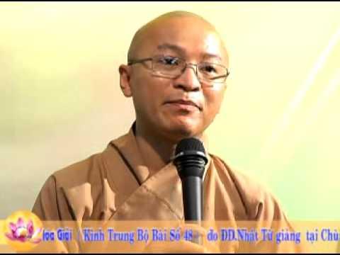 Kinh Trung Bộ 48 (Kinh Kosambi) - Hòa hợp và hòa giải (15/10/2006)