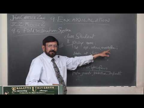 9.5 Field Declaration Syntax