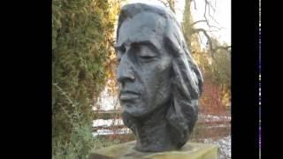 J. Niżyński - Fryderyk Chopin Nokturn b-moll op. 9 nr 1