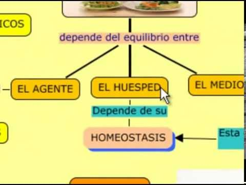 Historia Natural de la Enfermedad - YouTube