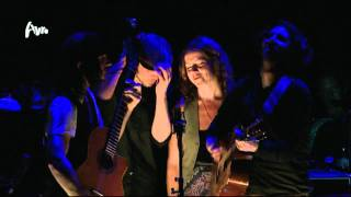 Patrick Watson Meets Royal Concertgebouw Orchestra HD
