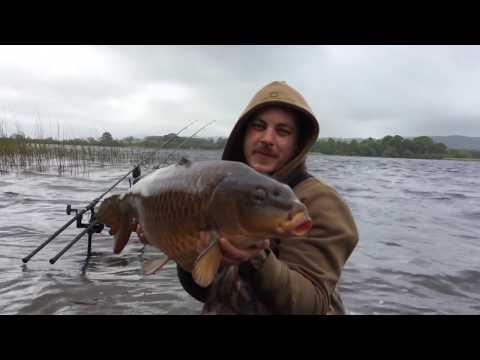 Carp Fishing - The Castle Loch Campaign