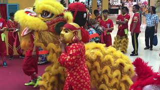 Lion Dance Takashimaya Mall Vietnam