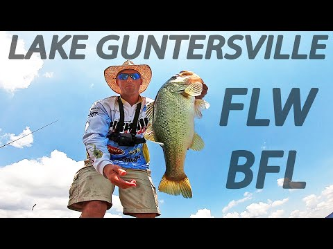FLW BFL Tournament On LAKE GUNTERSVILLE! (SUMMER BASS FISHING)
