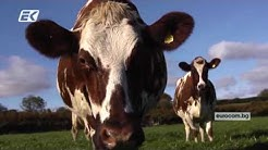 Мярка 11: Биологично земеделие от ПРСР 2014 - 2020