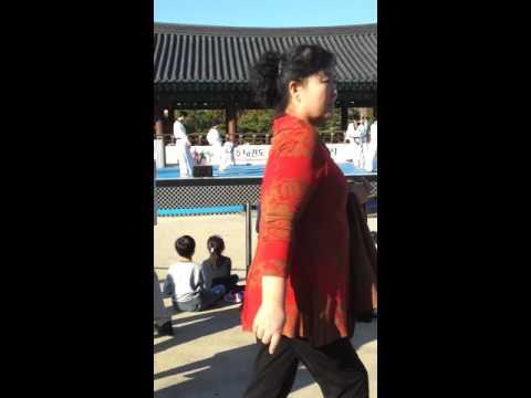 Taekwondo Demonstration at Namsangol Hanok Village